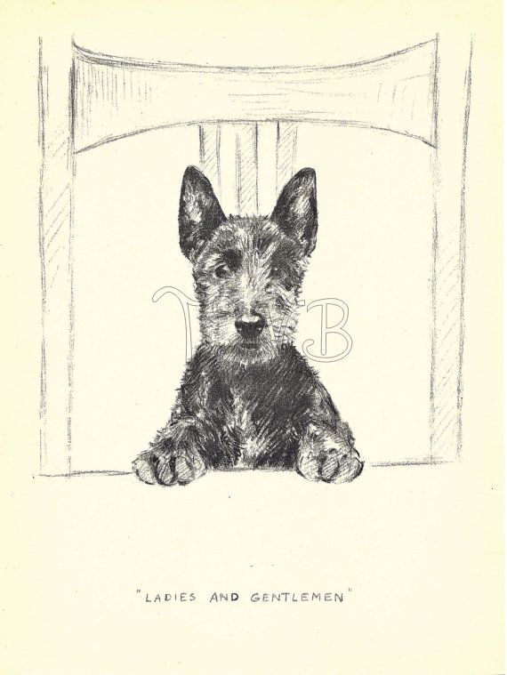 This is an original book plate from the 1930s by the famous animal illustrator, Kathleen Frances Barker, a British artist and illustrator known for