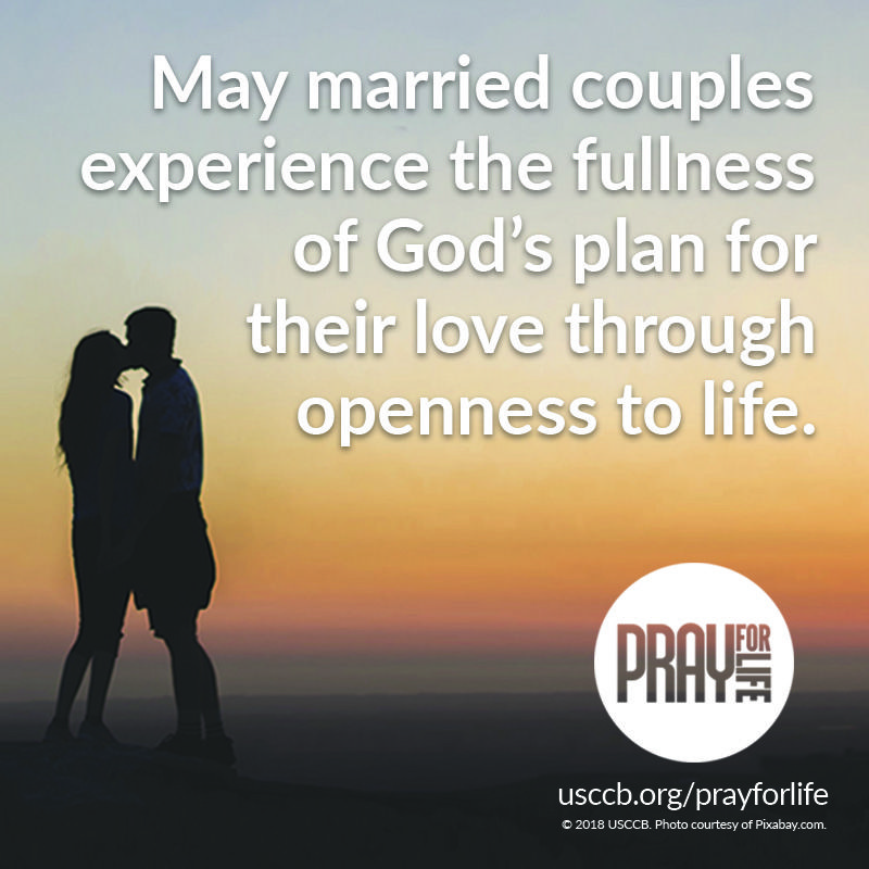 Pray, learn about, and reflect on marriage, the sanctuary