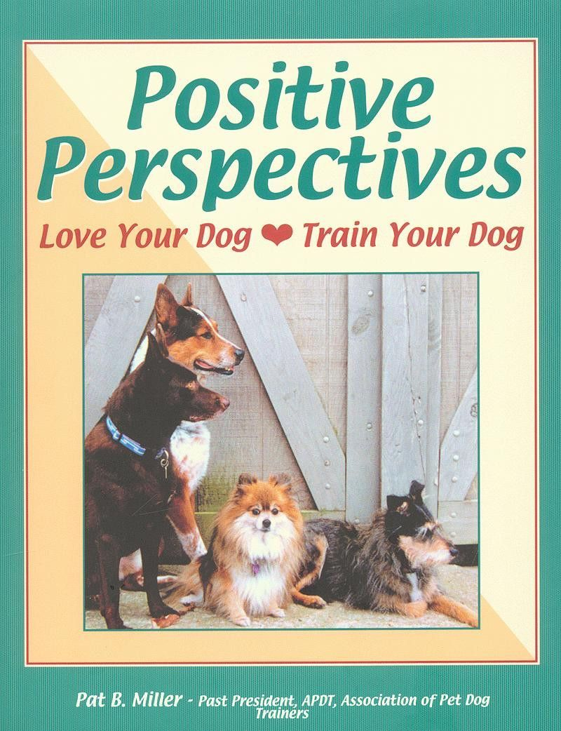 Positive Perspectives Love Your Dog Train Your Dog By Pat