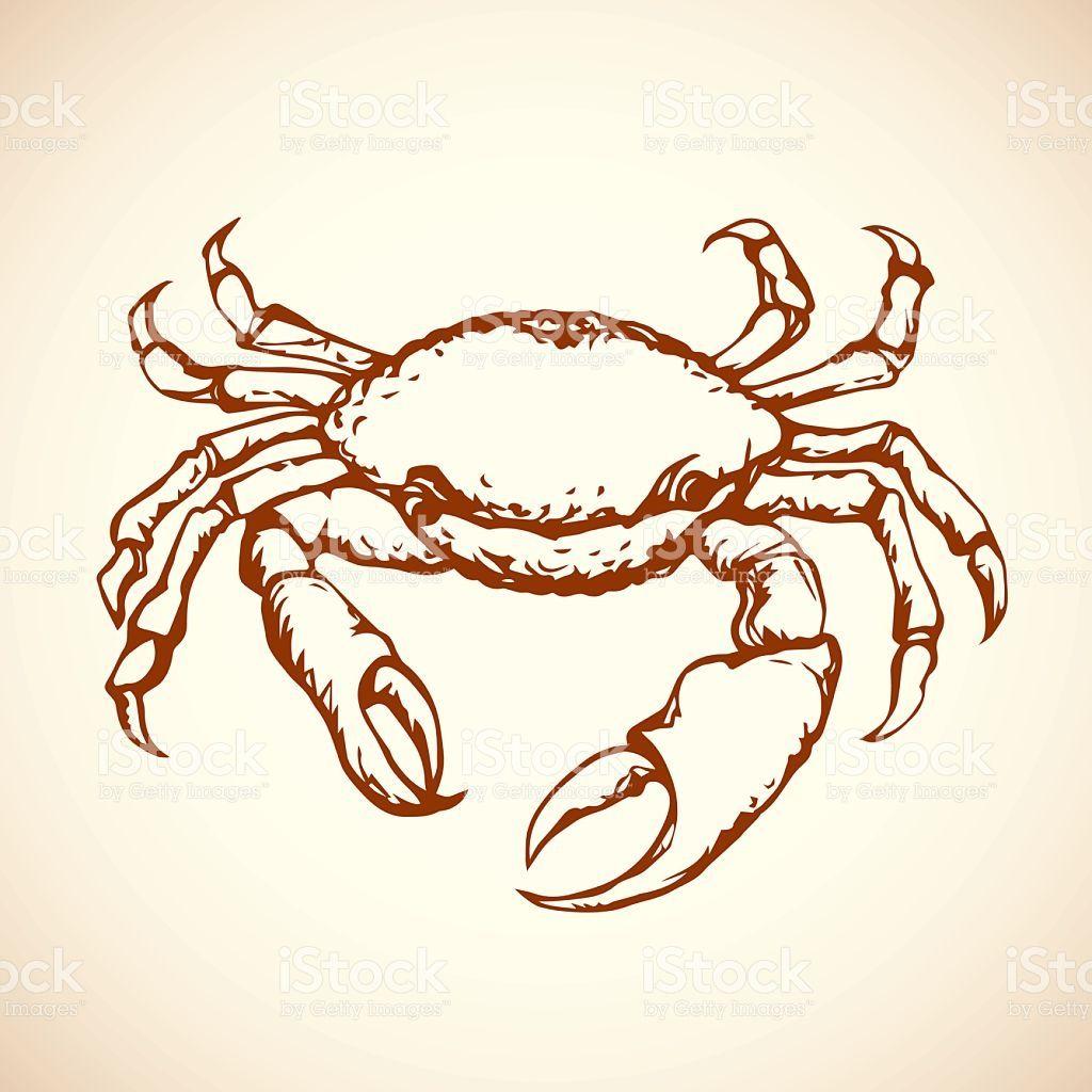 Risultati immagini per crab mechanical draw   I peeench ...