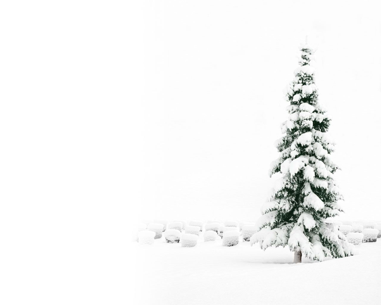 Snowy Christmas Tree Wallpaper Christmas Desktop Wallpaper Christmas Wallpaper Hd Christmas Desktop