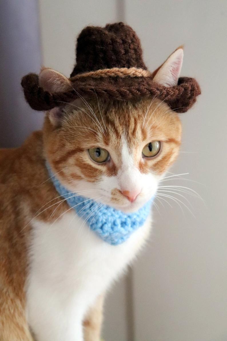 Cowboy Hat For Cats Bandana Add On Option Cowboy Halloween Etsy Cat Bandana Cat Halloween Costume Cat Costumes
