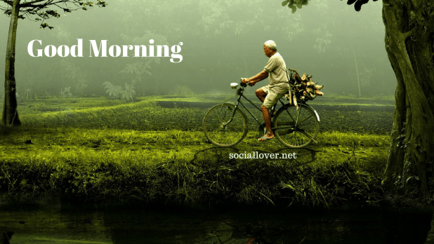 Village Morning In 2020 Good Morning Images Good Morning Animals Morning Pictures