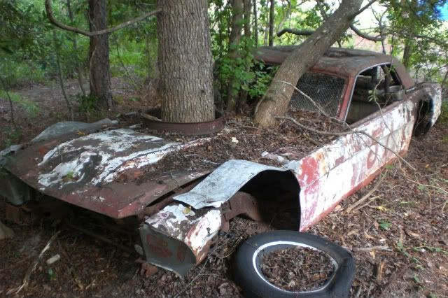 classic cars rotting old 65 mustang stock car rotting vintage mustang forums