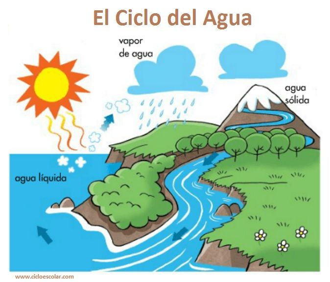 Resultado De Imagen Para Imagenes Del Ciclo Del Agua Science For Kids Water Cycle School Projects