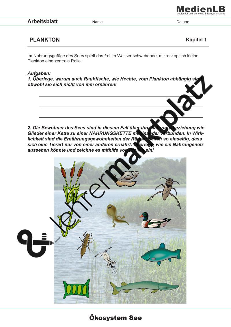 Ökosystem See - Faszination Süßwasser (inkl. Smartboard-Dateien ...