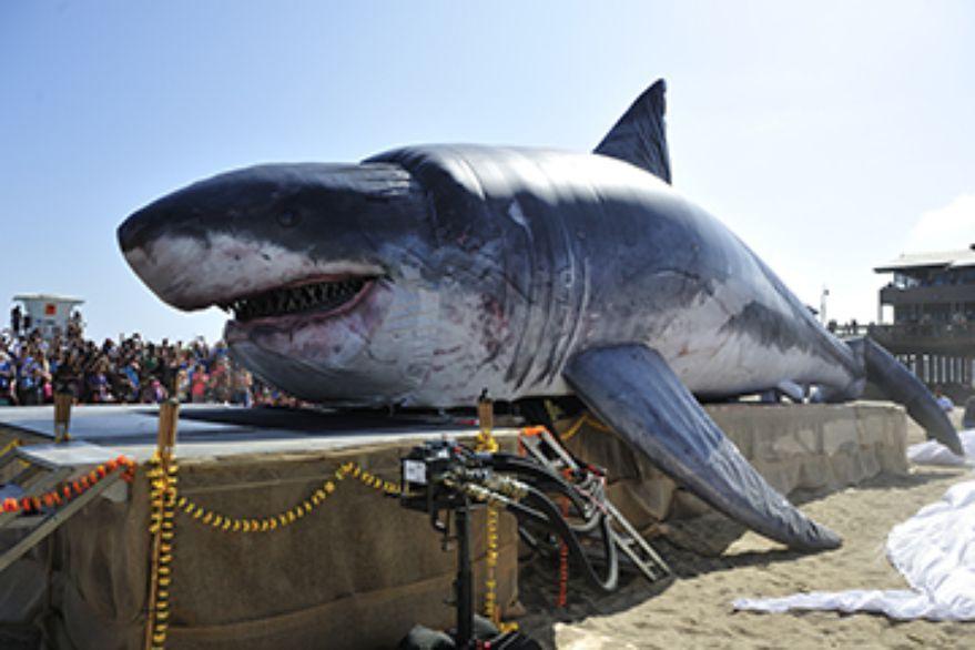 Inflatable Megalodon | SHARKS & SHARK ATTACKS | Megalodon shark, Big