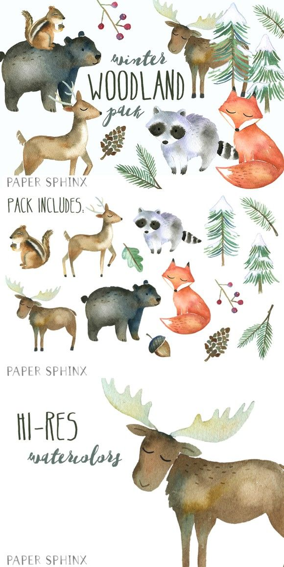 Winter Woodland Watercolor Pack Winter Drawings Watercolor Nursery