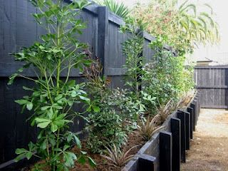 garden design auckland new zealand landscaping ideas - Native Garden Ideas Nz