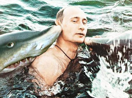 Badass Vladimir Putin Really Is Screen Shot 2010 11 29 At 93956 Am Width 600x
