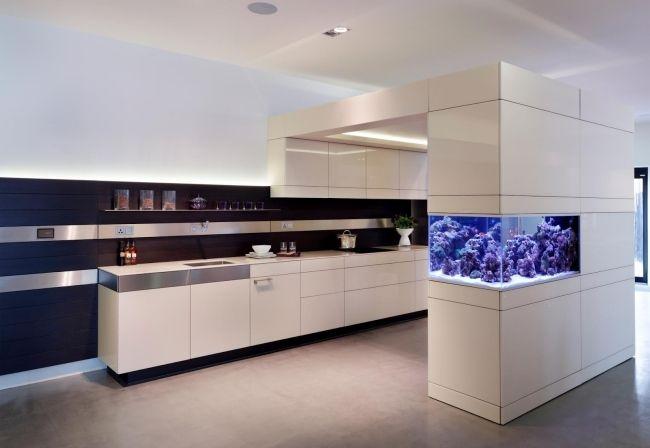 Aquarium Küche Weiße Schränke Blaue Lampen Koralle