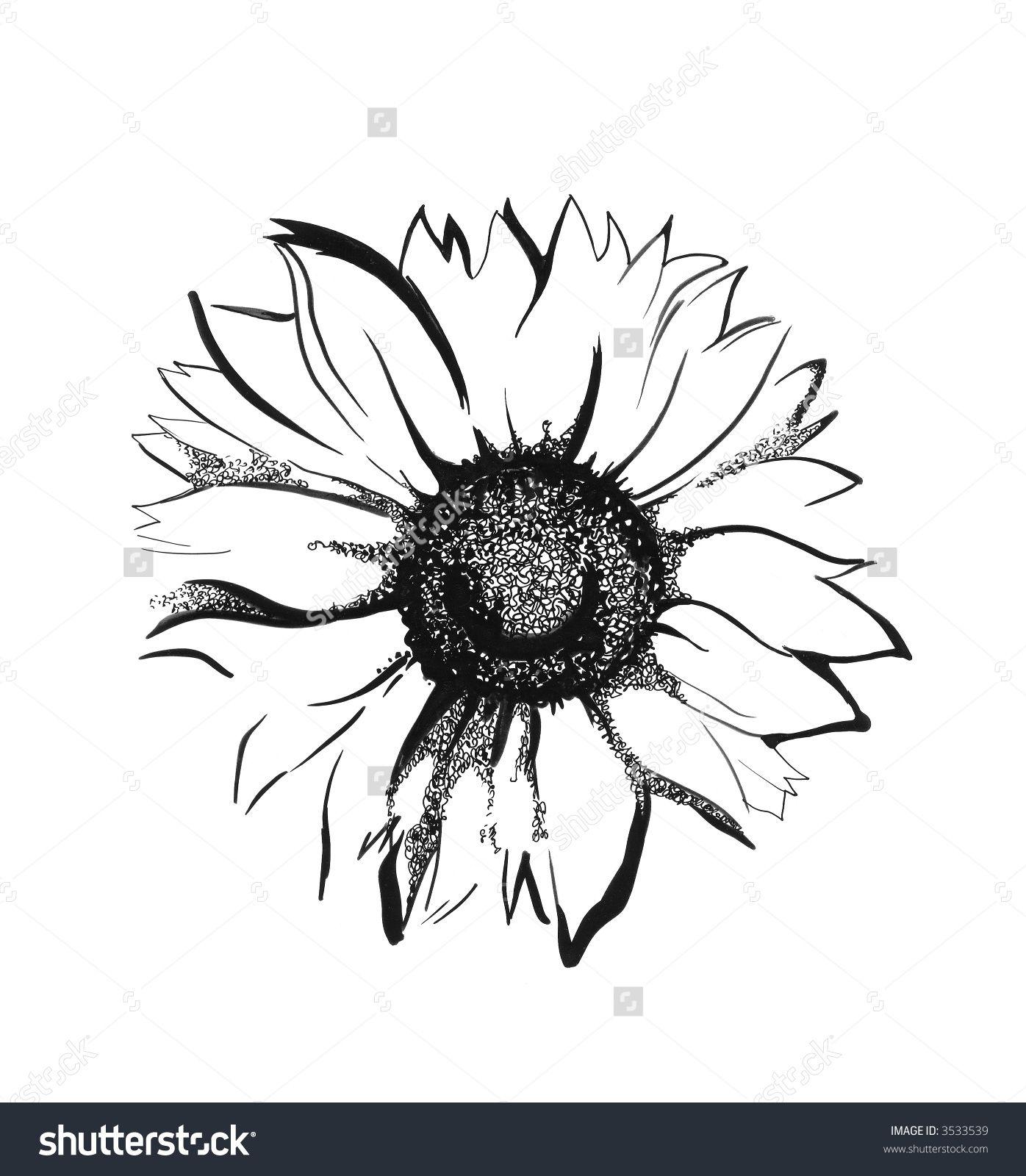 Sunflower sketch   tattoo   Pinterest