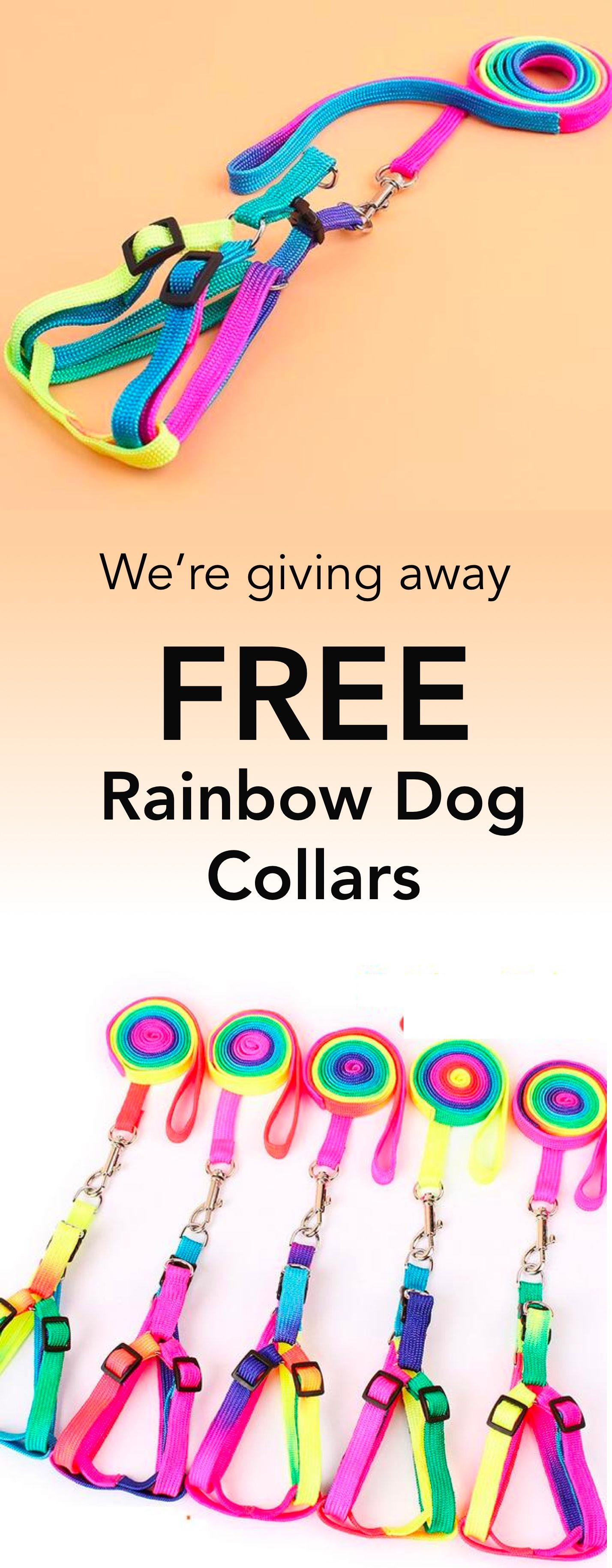 FREE Adjustable Rainbow Leash + Collar Harness