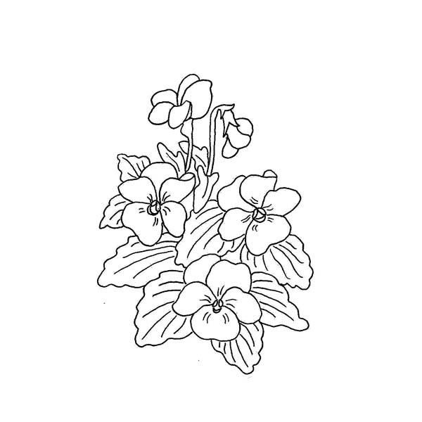 Drawings Of African Violets Google Search Tattoos In 2018