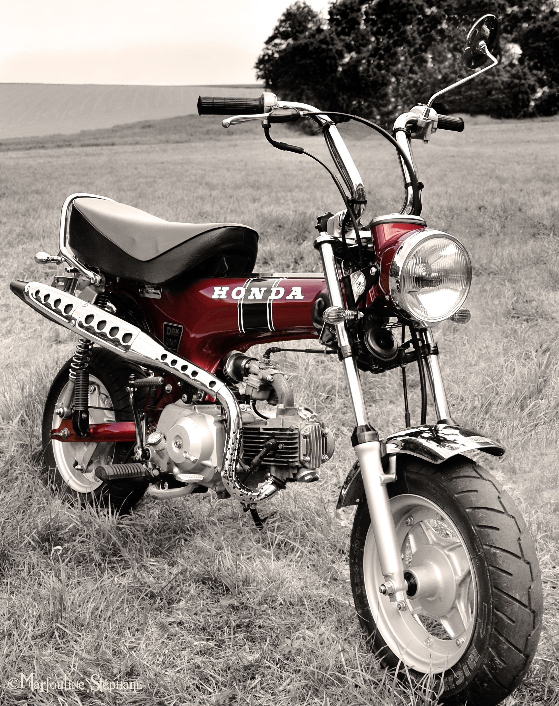 honda dax by sulfochromix mini motos pinterest. Black Bedroom Furniture Sets. Home Design Ideas