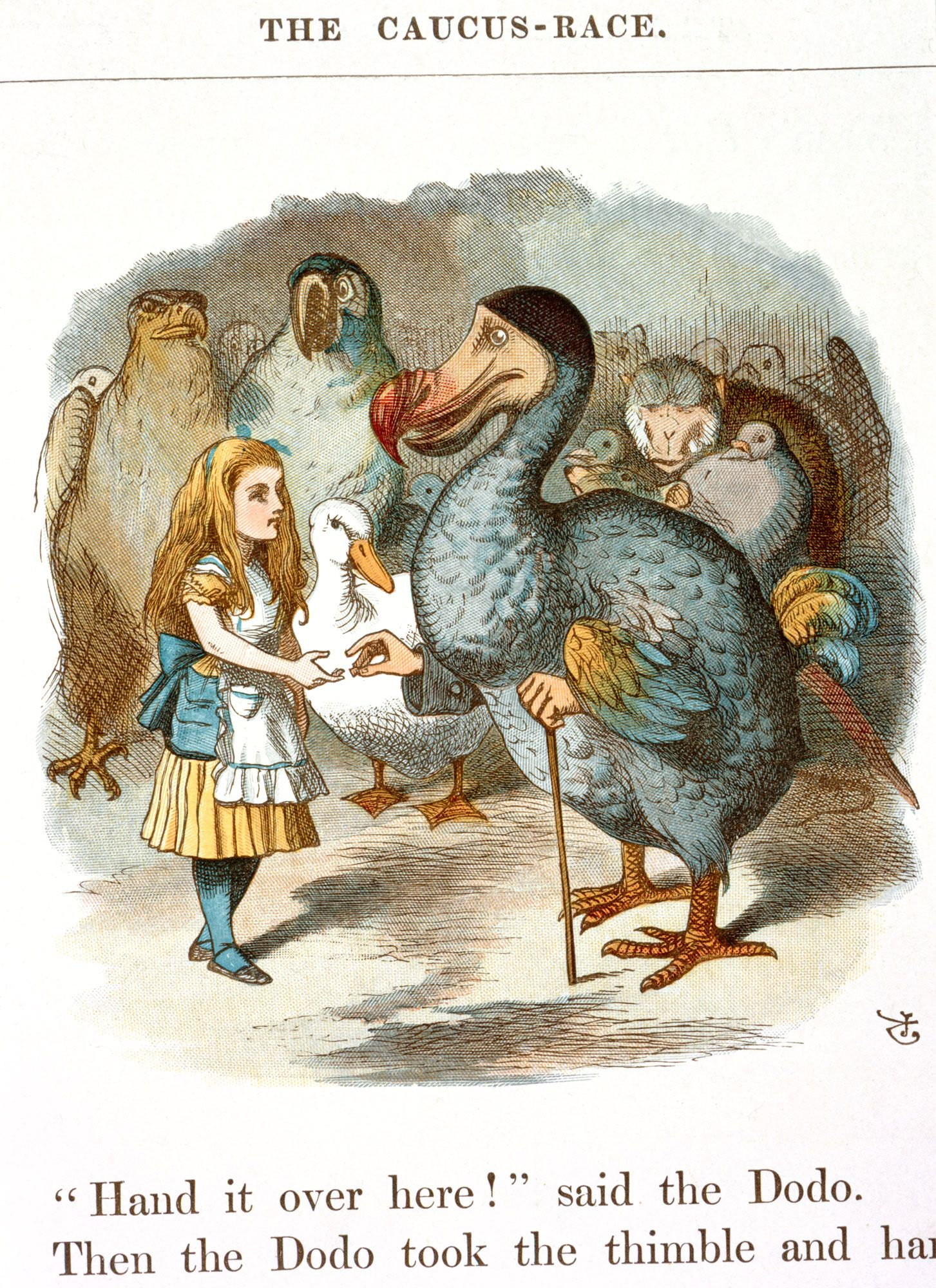 Quot Alice And The Dodo Quot Illustration For Second Chapter By