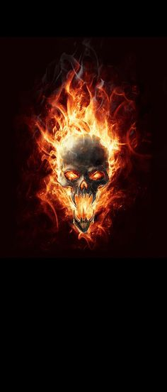 Skull Flames Door Wrap Flaming Skull With Black Background Contact