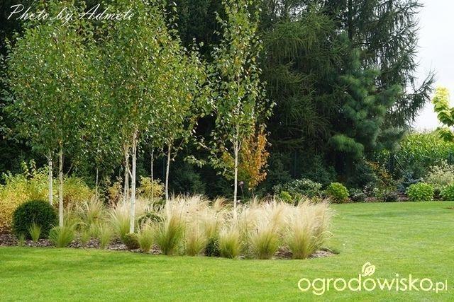 Organic Gardening Training OrganicGardeningGreenhouse id
