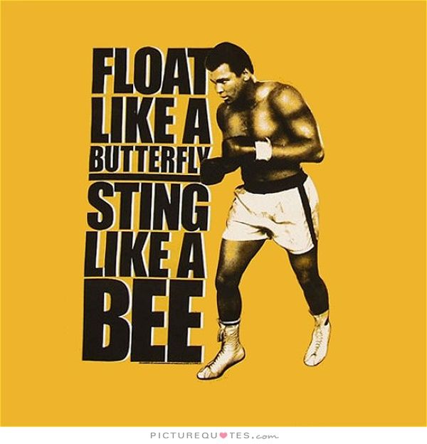 Muhammad Ali Quotes Google Search Muhammad Ail Rip 1942 2016