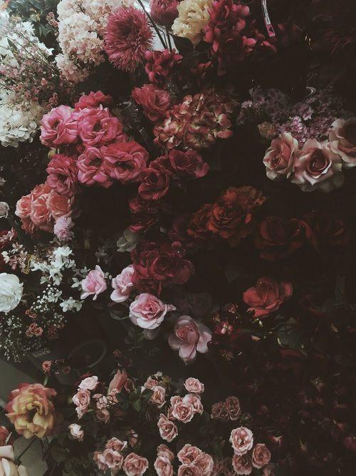 Floral Vintage Flower Backgrounds Vintage Flowers Wallpaper Background Wallpaper Tumblr