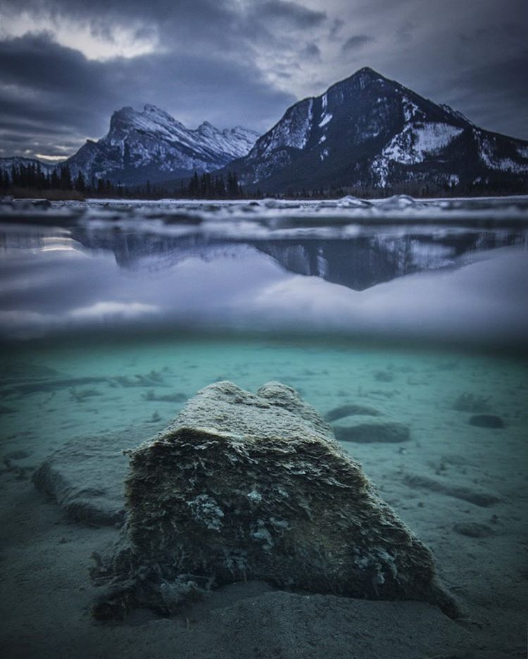 """""""Hidden treasures under the water at Vermilion Lakes. Even when the weather isn't perfect, there's always a surprise waiting to be discovered #BALLWatch…"""""""