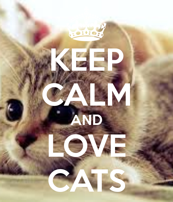 Keep Clam And Love Cats