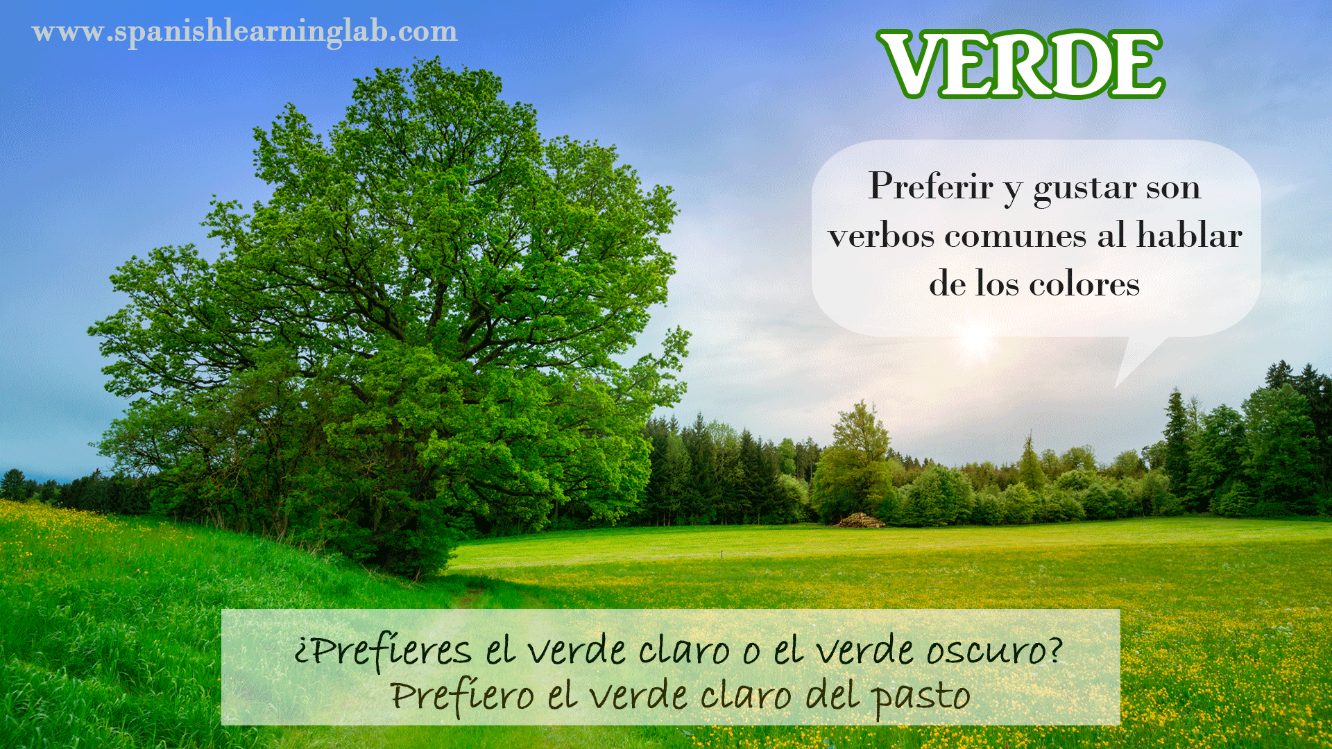 How To Say Green In Spanish Verde Preferir To Prefer And Gustar To Like Are Common Verbs W Spanish Colors Learning Spanish Spanish Language Learning [ 1080 x 1920 Pixel ]