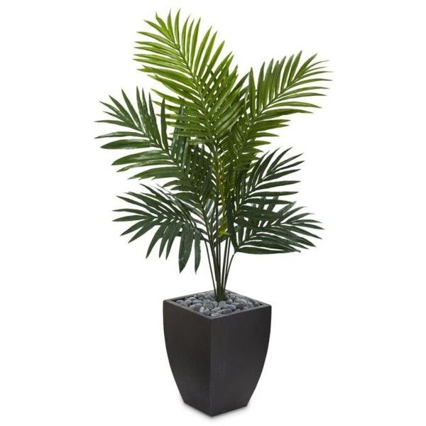 Nearly Natural Kentia Palm Artificial Tree ($180) ❤ Liked On Polyvore  Featuring Home, Home Decor, Floral Decor, Green, Fake Trees, Nearly  Natural,u2026
