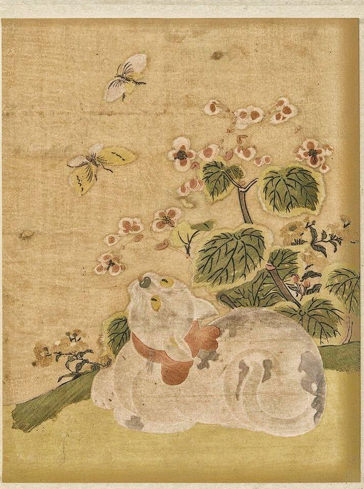 Cat and butterflies   Suzuki Harunobu   1765-1780   Japanese hanging scroll. Rijksmuseum