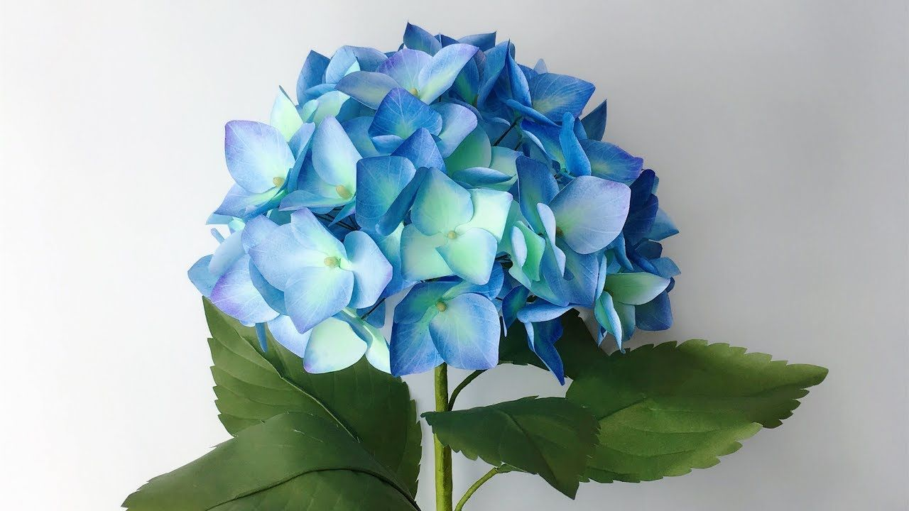 Abc Tv How To Make Hydrangea Paper Flower From Printer Paper