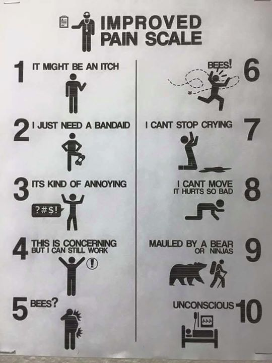 Improved pain scale now with bees also physical therapy pinterest rh