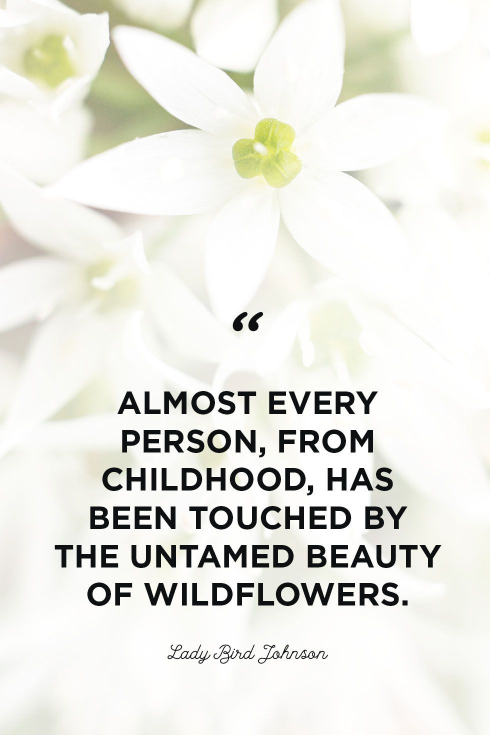 50 Best Flower Quotes To Inspire Growth Flower Quotes Flower