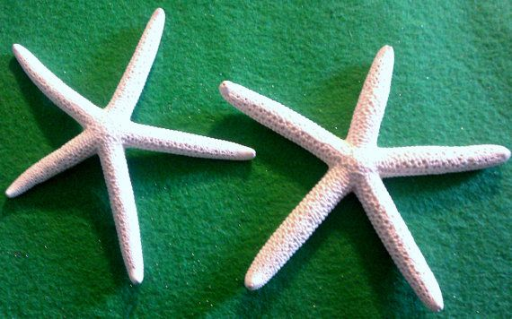 Starfish ocean Beach wedding tropical wedding by msformaldehyde, $8.00