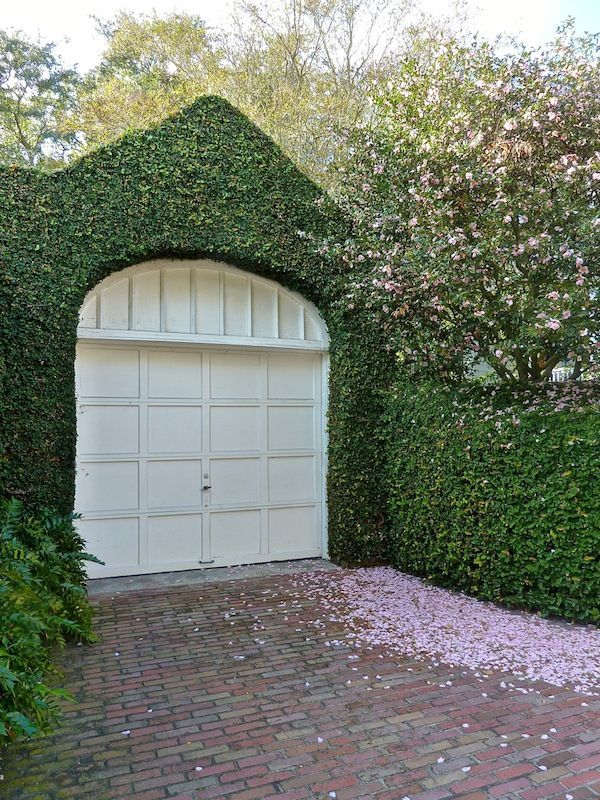Fig Ivy Health Foods Garage Door Design Garage Doors Exterior