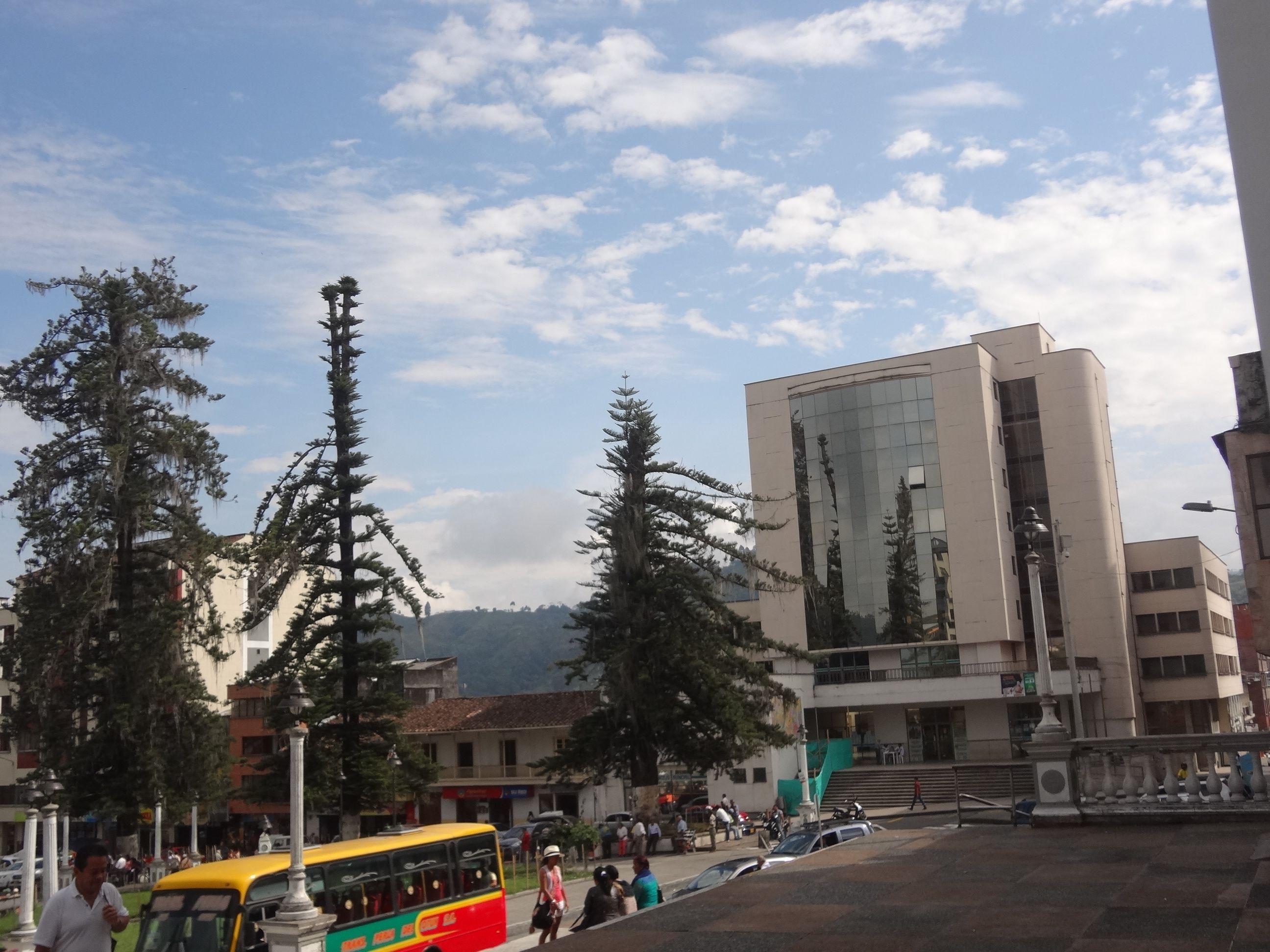 Resultado de imagen para Imagen Alcaldìa de Santa Rosa de Cabal