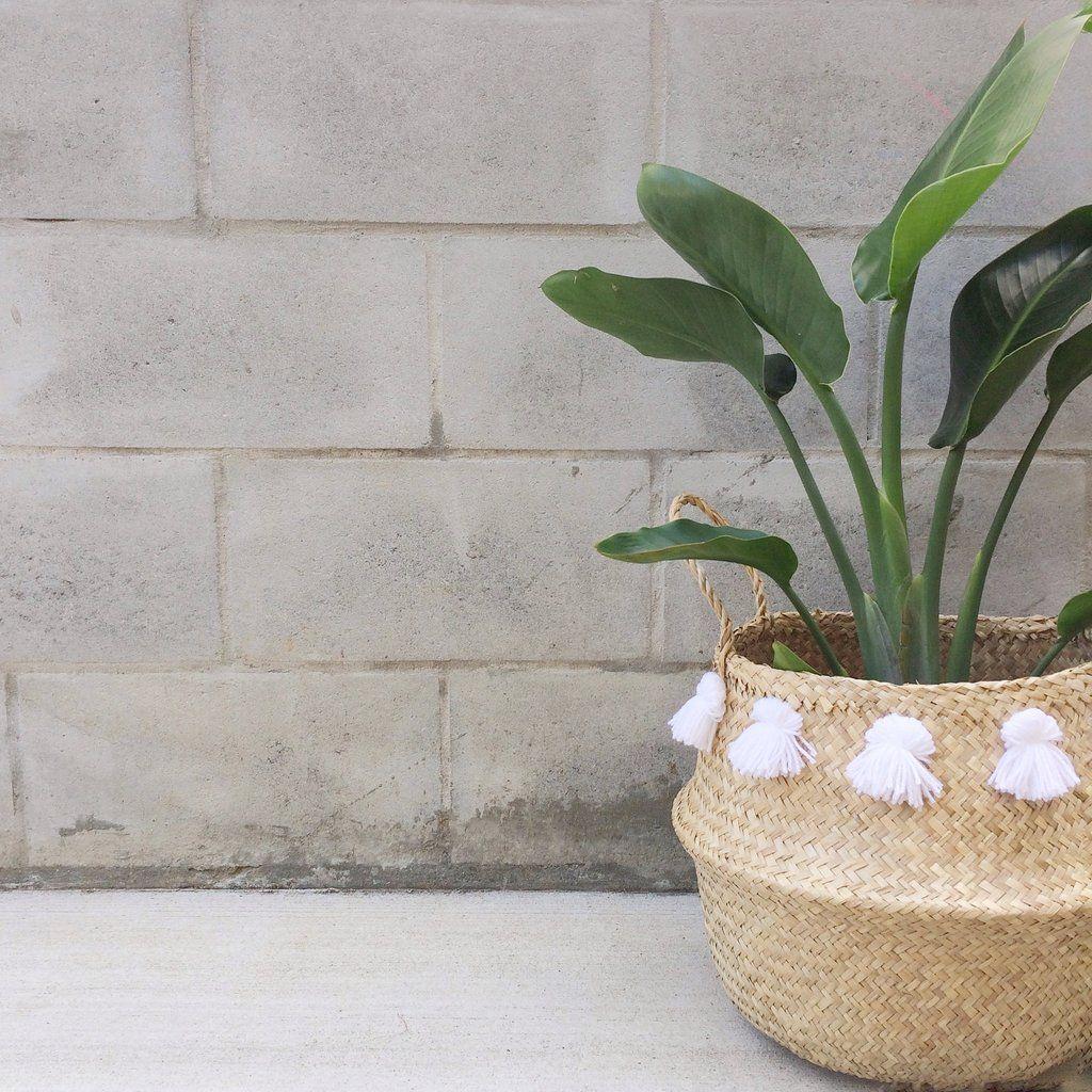 White Tassel Basket Seagrass Basket Plant Holders Basket