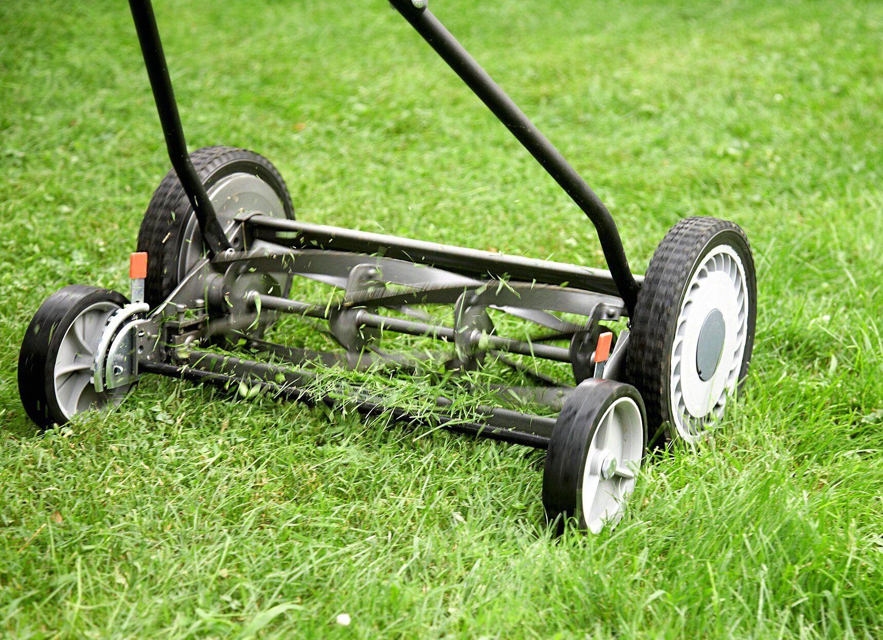 How to find the best lawn mower for your needs best lawn