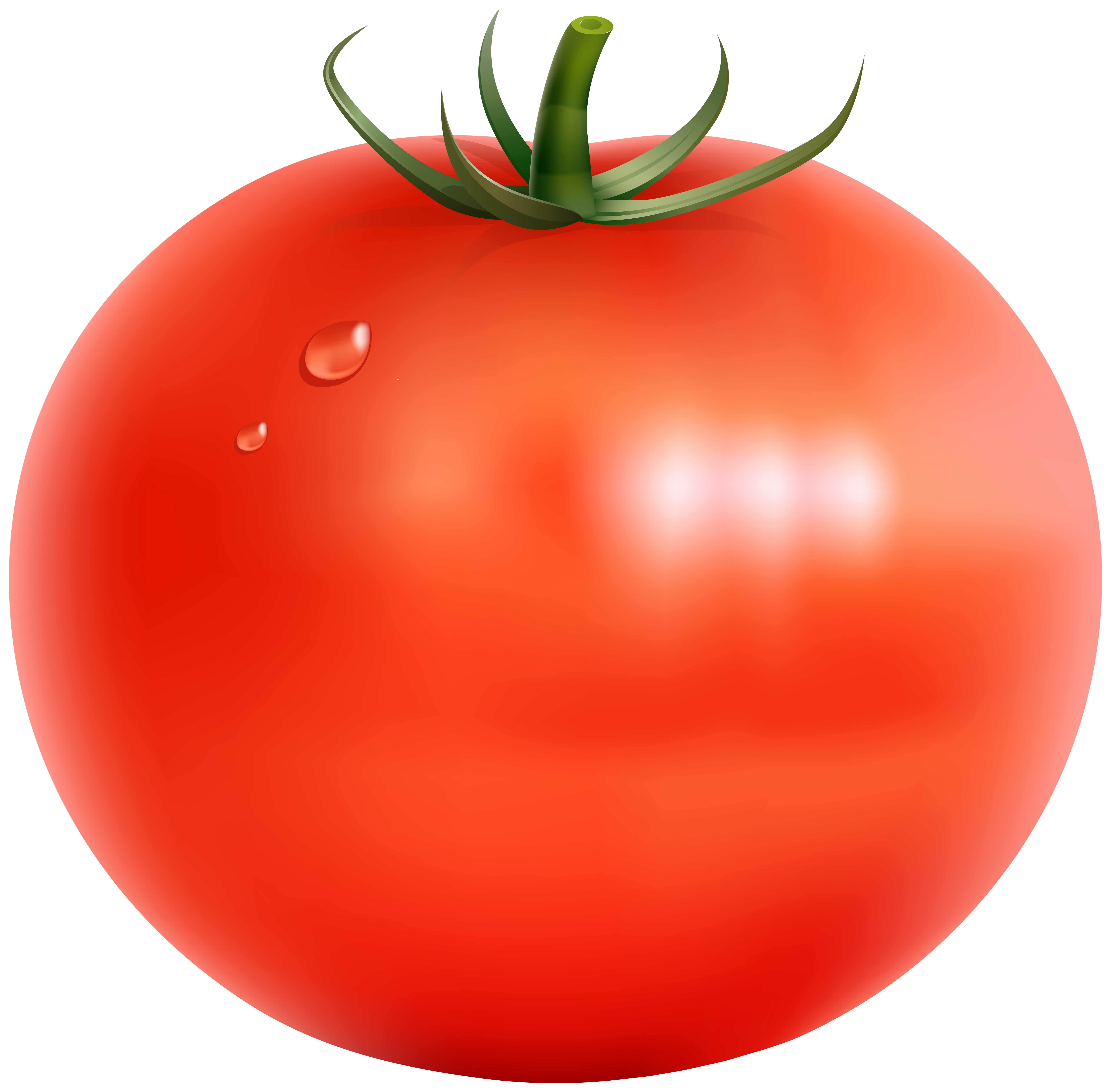 Tomato clipart transparent 14 Food crafts, Tomato, Clip art
