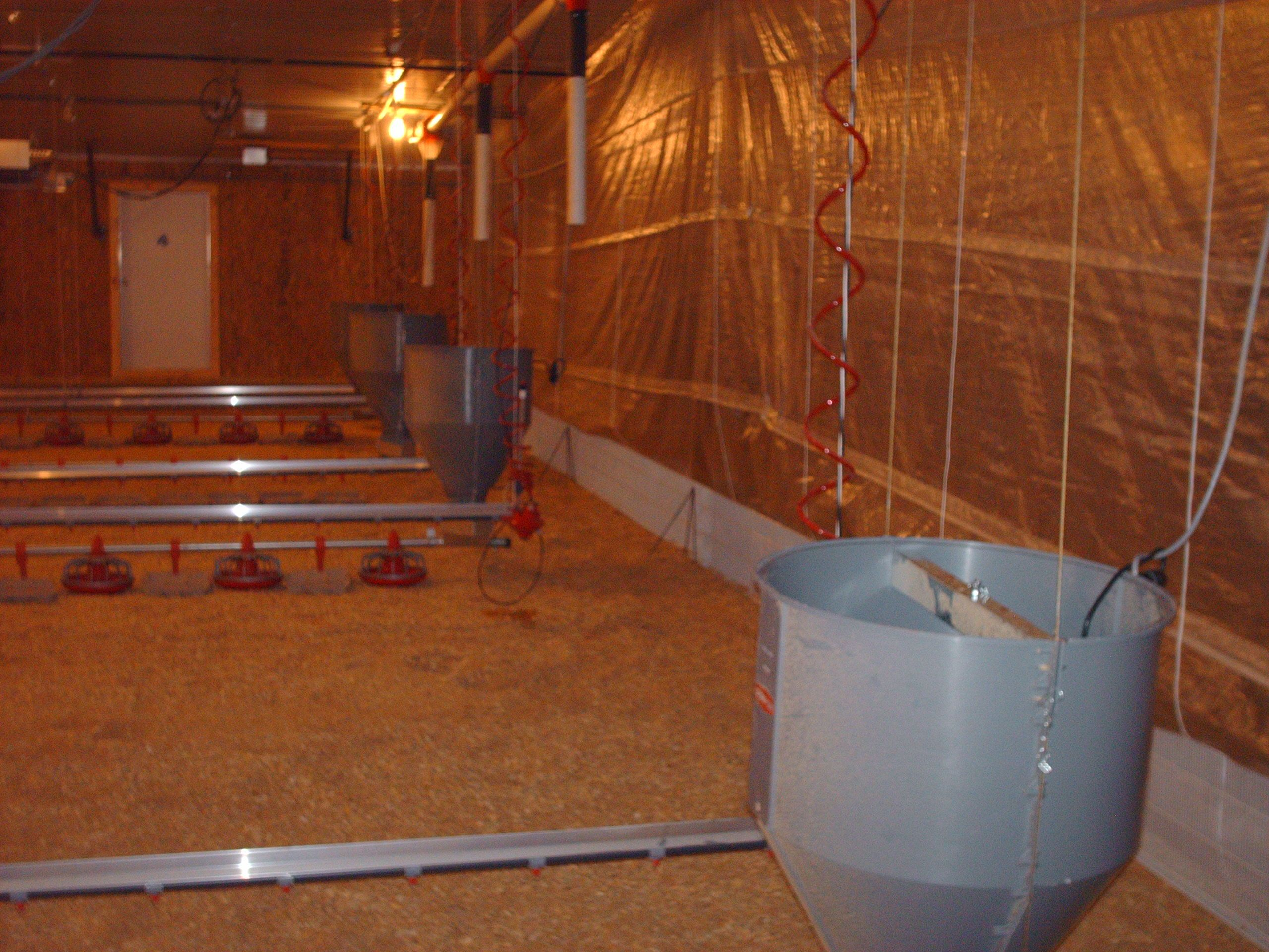 Simmons 60' x 600' with 3 feed hoppers just after installation