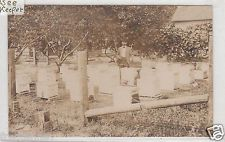 RPPC - Bee Keeping Scene - Apiary - early 1900s