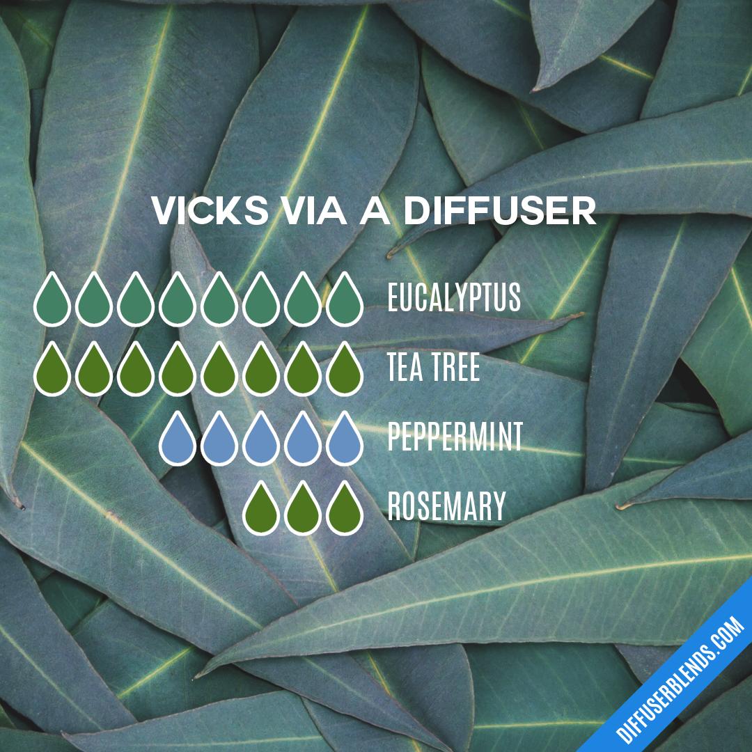 Blend Recipe 8 drops Eucalyptus, 8 drops Tea Tree, 5
