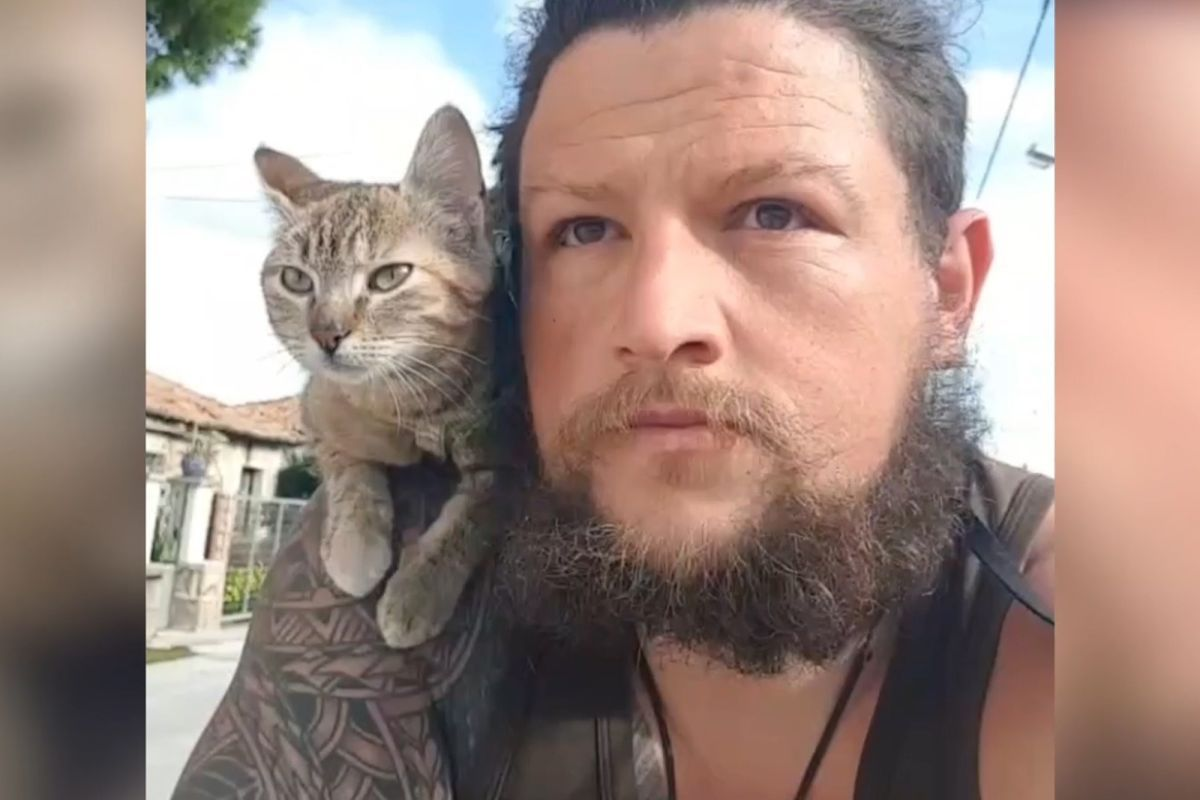 This stray cat is riding high. Backpacker Dean Nicholson