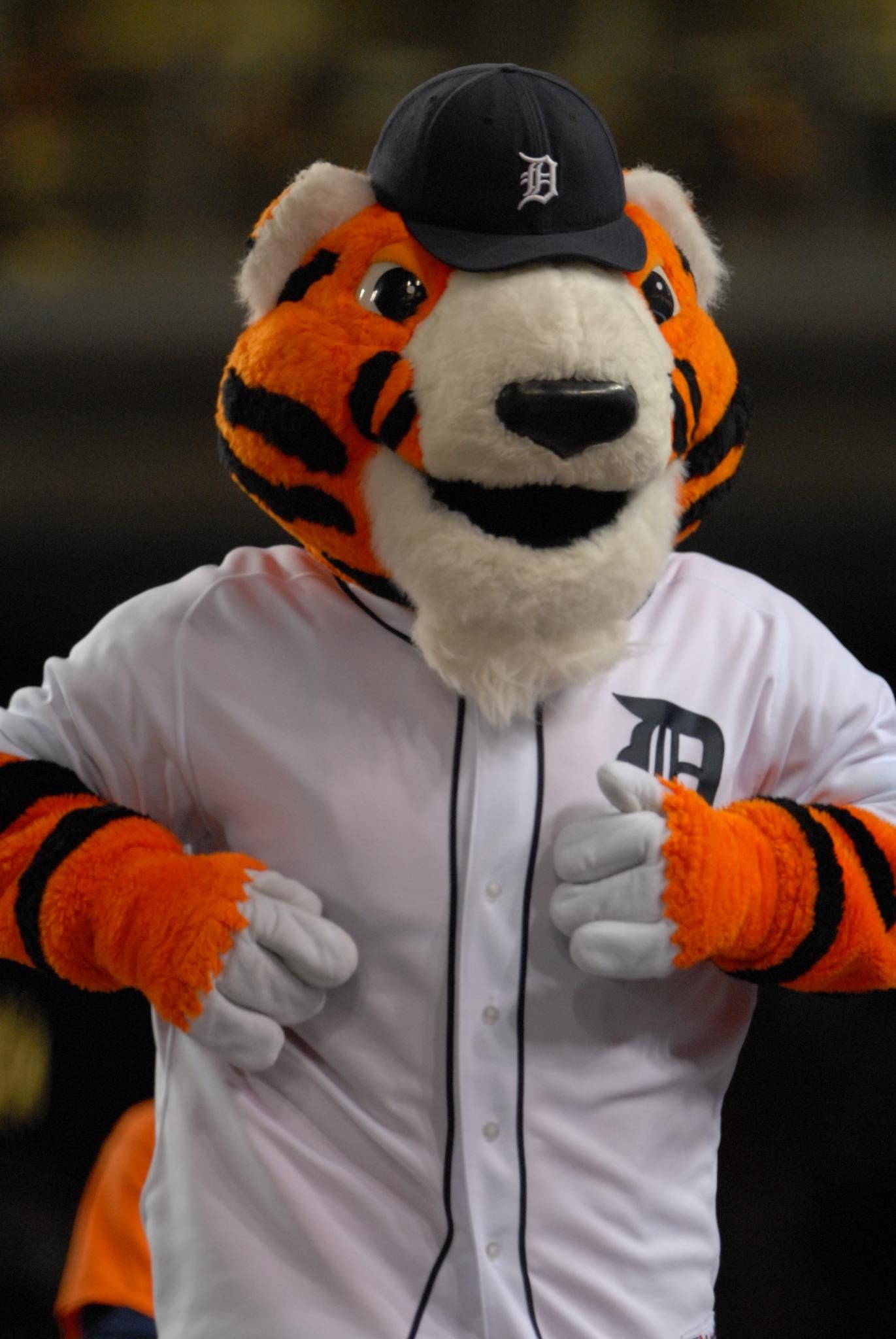 Pin On Detroit Tigers