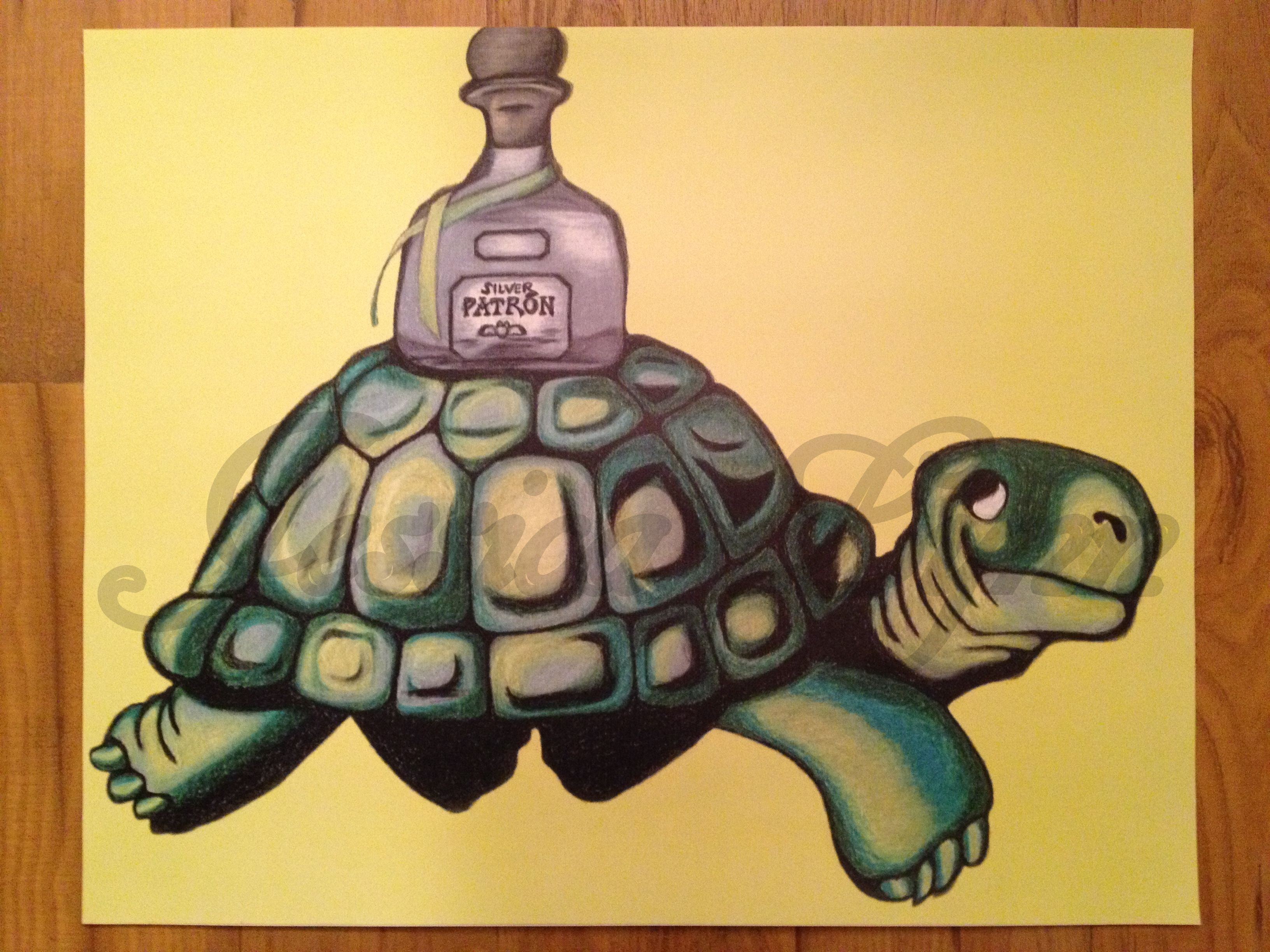 Rendition of Guinness Beer Turtle with Patron Tequila Bottle 18\