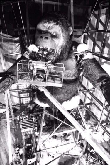 Kongfrontation Construction | Universal Studios Florida in ...