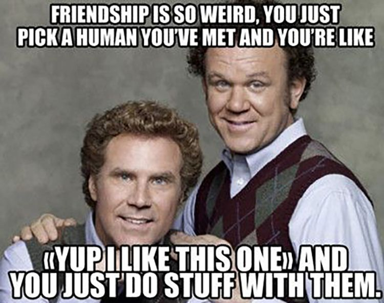 Funny Friendship Memes To Brighten Your Day Funny Friend Memes Friendship Humor Best Friends Funny