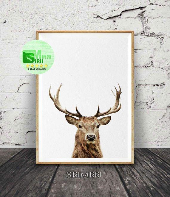 Deer Print Deer Head and Antlers Printable Wall Art Poster