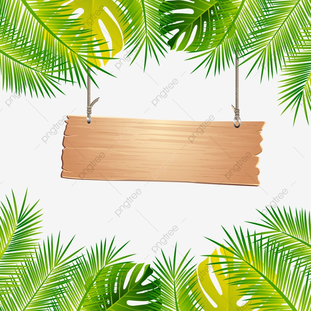 Beautiful Summer Tropical Leaf Leave Frame And Border Tropical Frame Leave Png And Vector With Transparent Background For Free Download Animasi
