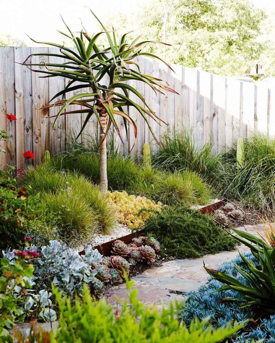 Plant / Life: Sam Clayton & Mal Wood | Melbourne garden ...