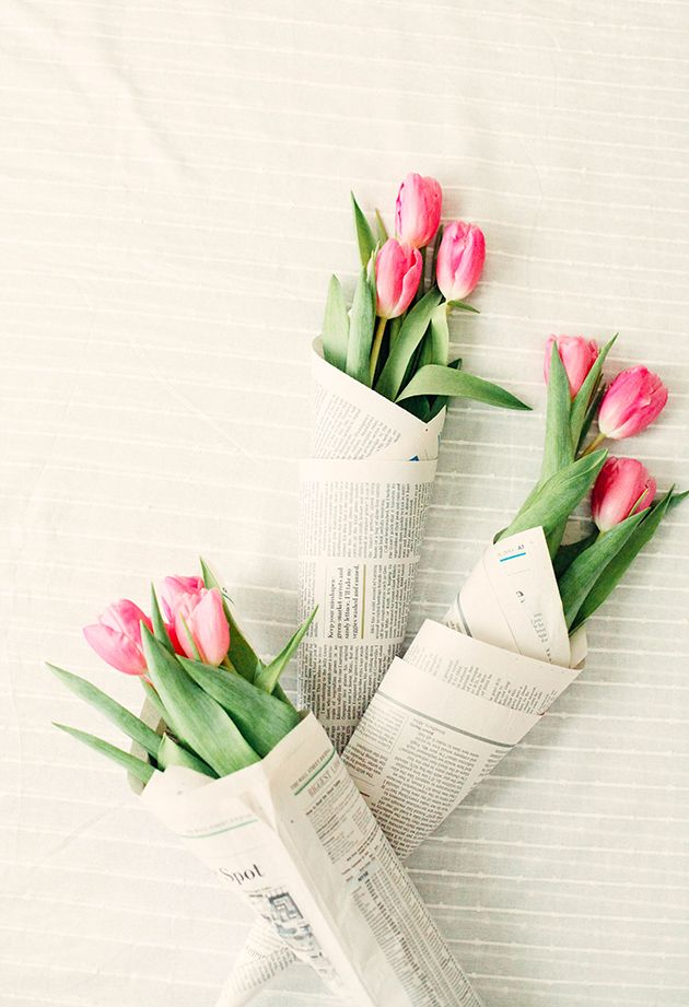Image result for Tulips pinterest